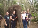 With friends at an elephant sanctuary