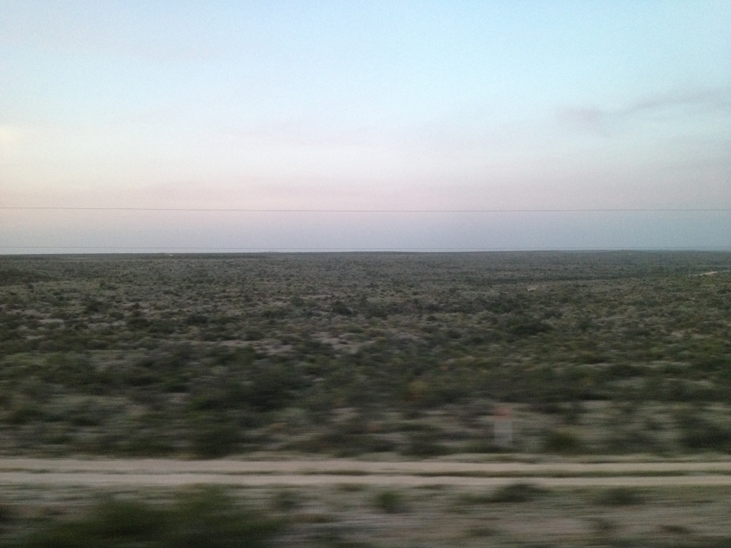 I'll only show you the one picture of what miles of Texas desert look like
