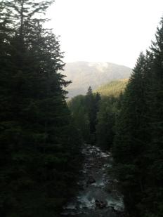 IMG_1417 Skanomish river