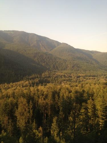 IMG_1423 Cascades