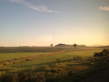 IMG_1622 ND fields