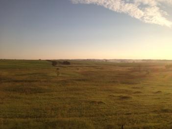 IMG_1624 ND fields