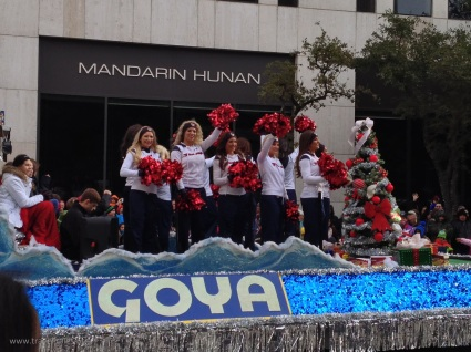 Cheerleaders for the Houston Texans, the American Football team