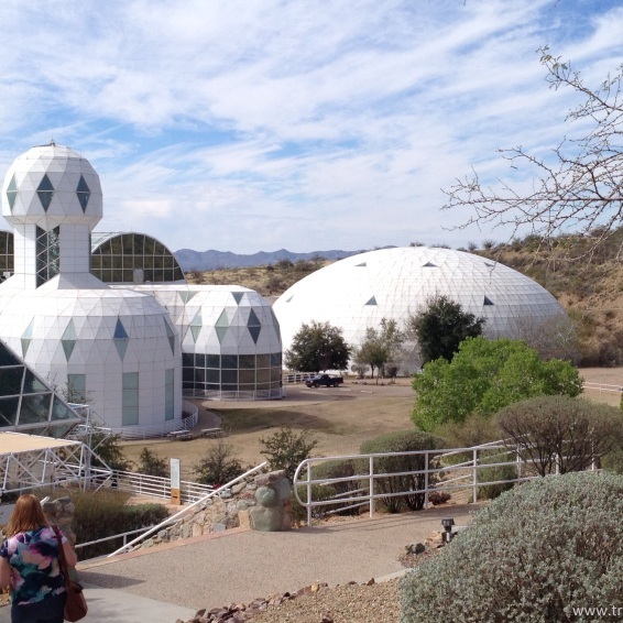 biosphere habitat and lung