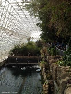 biosphere ocean 3