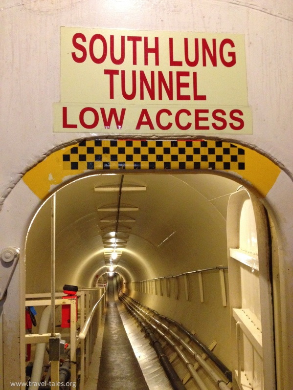 lung tunnel access