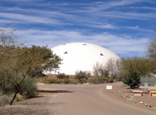 biosphere lung from outside