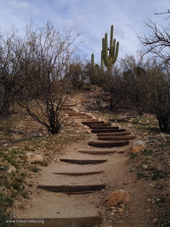 state park steps to cactus