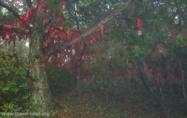 Guilin 8 You Shan 8 prayers cropped
