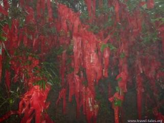 Guilin 9 You Shan 9 prayers
