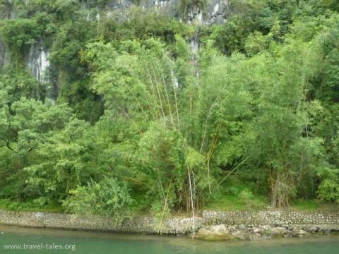 riverbanks Guilin 74 Li river cruise 43